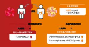 大麦摂取がヒト腸内環境に与える影響の図