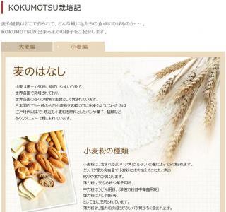 KOKUMOTSU栽培記-「小麦編」